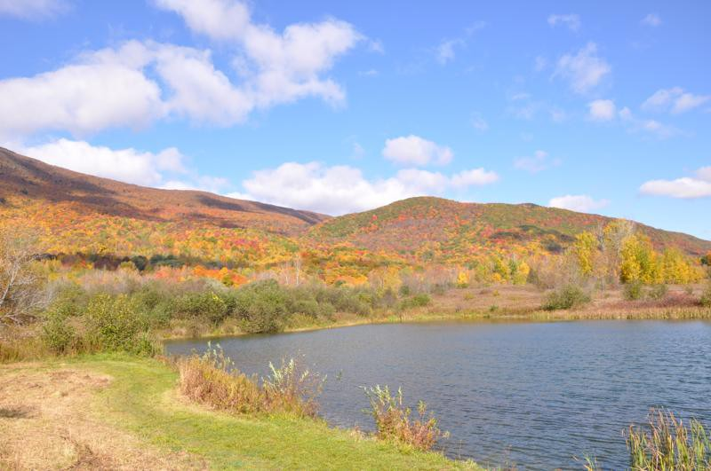 Fall Pond Greylock Glen
